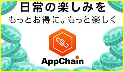 AppChain 危険